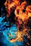 Gabriel Wickbold's Sexual Color Series –7