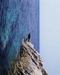 Irracional Walk by PhilippeRamette