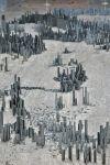 Ephemicropolis por Peter Root8