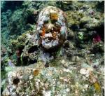 Grace Reef por Jason de CairesTaylor