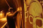 O grafite crítico inverso de Alexandre Orion6
