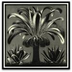Palm por M. C.Escher