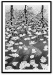 Three Worlds por M. C.Escher