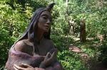 Into The Forest por Jill E. Ryan12