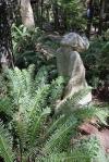 Into The Forest por Jill E. Ryan7