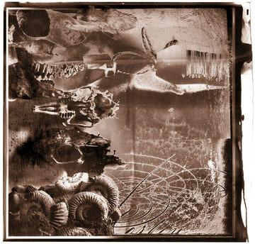 Ilustração do livro A small book of black and white lies por dave mckean