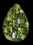 Verde por LindaLundgren