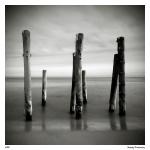 Foto ensaio de Maciej Koniuszy 04
