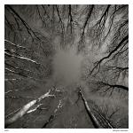 Foto ensaio de Maciej Koniuszy 06