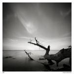 Foto ensaio de Maciej Koniuszy 10