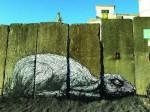 ROA graffiti 2