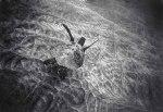 Black and White Underwater World por Wayne Levine4