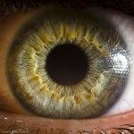 Your Beautiful Eyes por Suren Manvelyan2