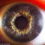 Your Beautiful Eyes por Suren Manvelyan5