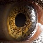 Your Beautiful Eyes por SurenManvelyan