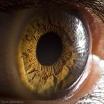 Your Beautiful Eyes por Suren Manvelyan