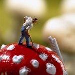 Akiko Lda e Pierre Javelle Miniature Artwork3