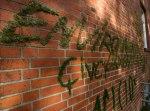 DTagno Graffiti
