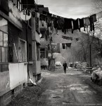 Dimitar Variysky Photowork4