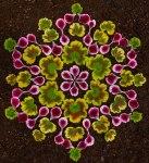 Kathy Klein Artwork5