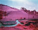 Richard Mosse Photowork 2