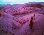 Richard Mosse Photowork 5