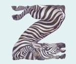 Animals in Alphabet by Casey Girard6
