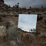 Daniel Kukla Photowork