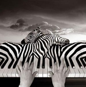 Thomas Barbey Photomontage