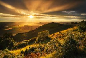 Florent Courty Photowork